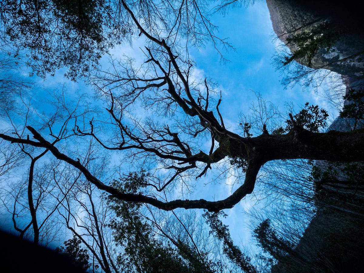 Parco dei Monti Picentini – Montella – Fiume Calore – Vallone Scorzella – 23/02/2020