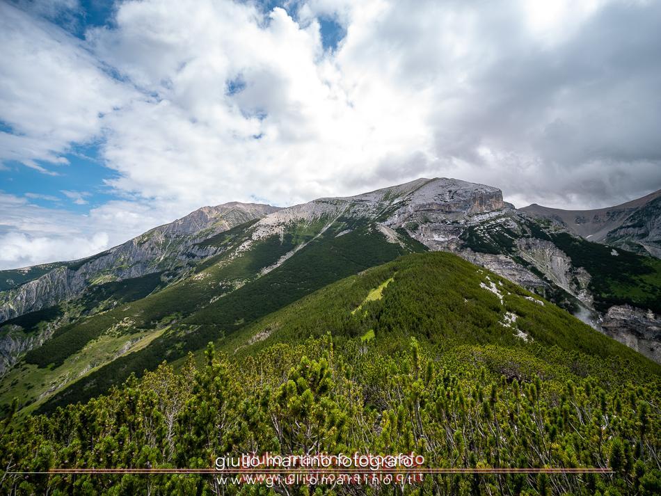 Parco Nazionale della Majella – Monte Amaro. 8-19/07/2020